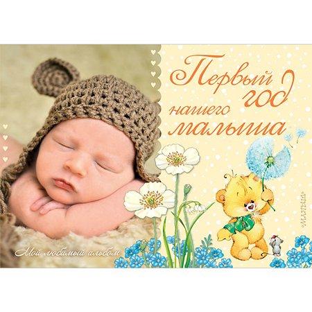 Альбом АСТ Первый год нашего малыша (корич)