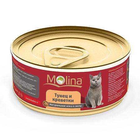 Корм влажный для кошек Molina 80г тунец с креветками в желе