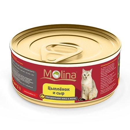 Корм влажный для кошек Molina 80г цыпленок с сыром в желе