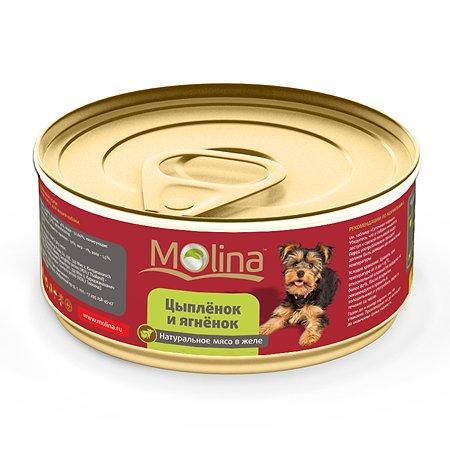 Корм для собак Molina цыпленок с ягненком в желе 85г