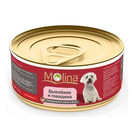 Корм для собак Molina цыпленок с говядиной в желе 85г