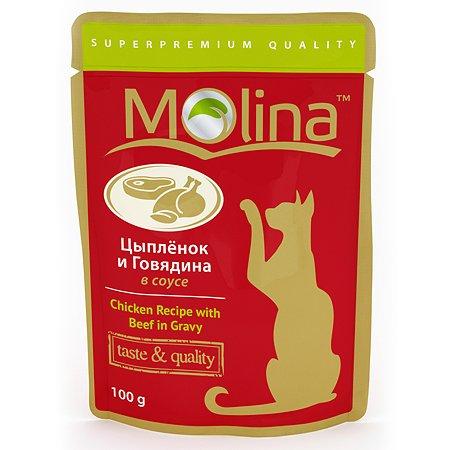 Корм влажный для кошек Molina 100г цыпленок с говядиной в соусе пауч
