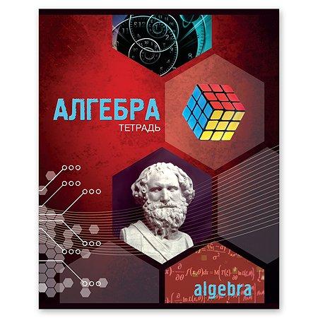 Тетрадь тематическая Полиграф Принт Алгебра А5 Клетка 48л 9876