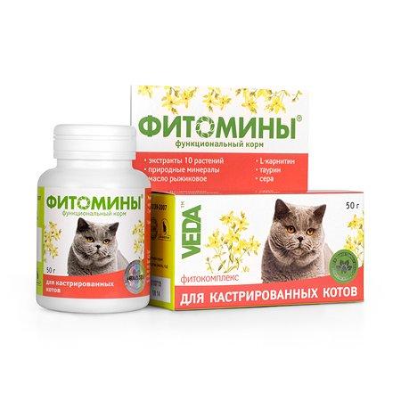 Добавка для кастрированных котов Veda Фитомины 50г