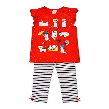 Комплект BabyGo футболка + легинсы