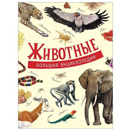 Книга Росмэн Животные Большая энциклопедия