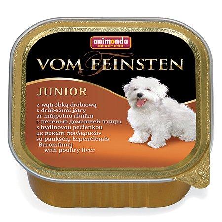 Корм для щенков ANIMONDA Vom Feinsten Junior с печенью домашней птицы консервированный150г