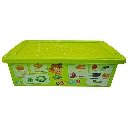 Ящик для хранения игрушек Little Angel X-BOX Обучайка Овощи-фрукты 30л