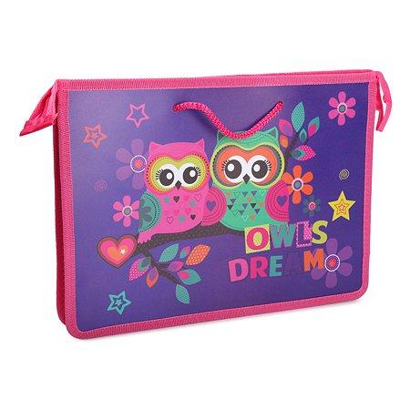 Папка Erhaft Owl Dreams А4 с ручками на шнурке MS0010