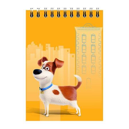 Блокнот Proff Тайная жизнь домашних животных A5 60 листов