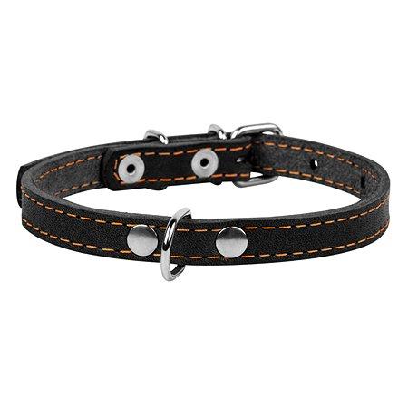 Ошейник для собак CoLLar малых пород Черный 00031