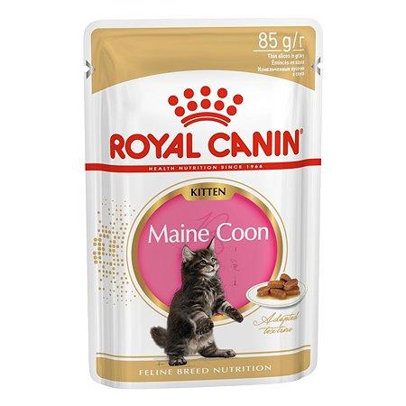 Корм влажный для котят ROYAL CANIN Kitten Maine Coon 85г соус пауч