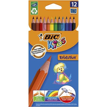 Карандаши BIC Kids Evolution, 12 цветов