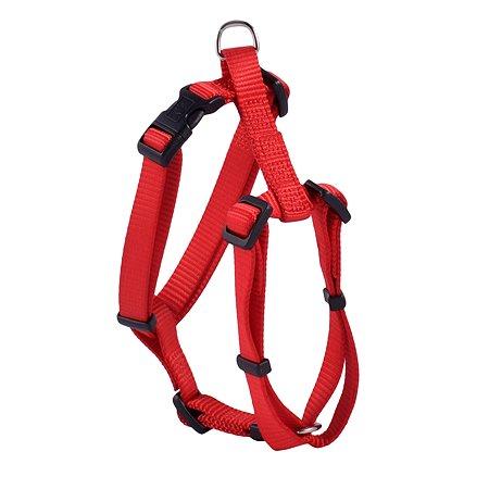 Шлейка для собак Hunter Smart Ecco Sport S Красная