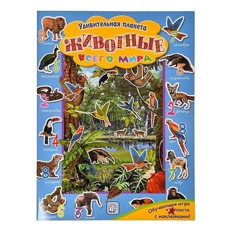 Книга Лабиринт Удивительная планета Животные всего мира