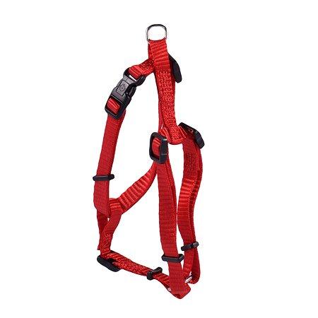 Шлейка для собак Hunter Smart Ecco Sport XS Красная