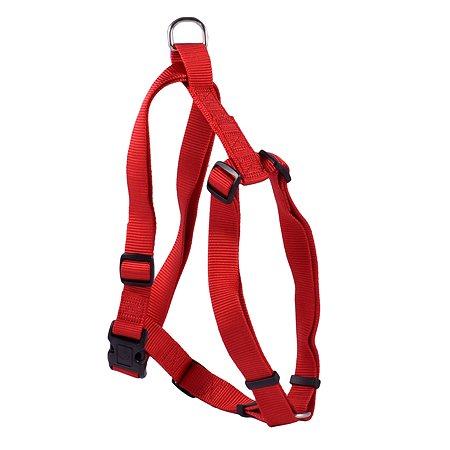 Шлейка для собак Hunter Smart Ecco Sport М Красная