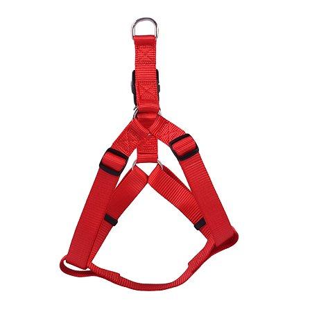 Шлейка для собак Hunter Smart Ecco Квик L Красная