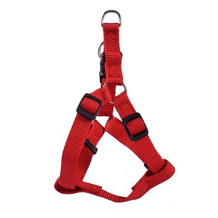 Шлейка для собак Hunter Smart Ecco Квик S Красная