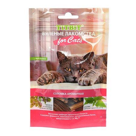 Лакомство для кошек TITBIT Соломка ароматная вяленая 40 г