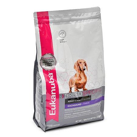 Корм для собак Eukanuba Dog DNA такса с мясом птицы 2.5кг