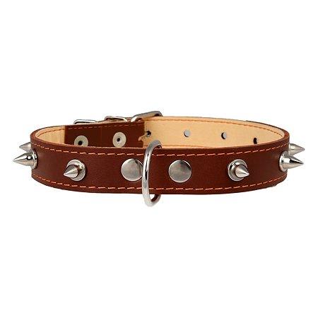 Ошейник для собак CoLLar средних пород двойной с шипами Коричневый 02426