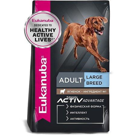 Корм для собак Eukanuba Dog для взрослых крупных пород с ягненком 2.5кг
