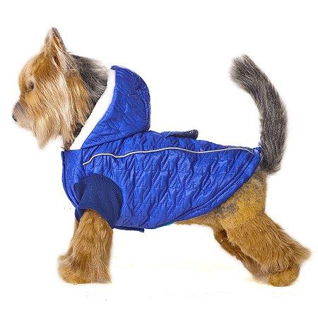 Куртка для собак Happy Puppy Синий иней 4 Синий