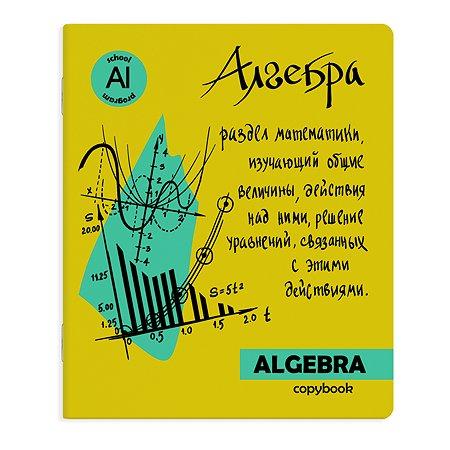 Тетрадь предметная Феникс + Алгебра Клетка 48л
