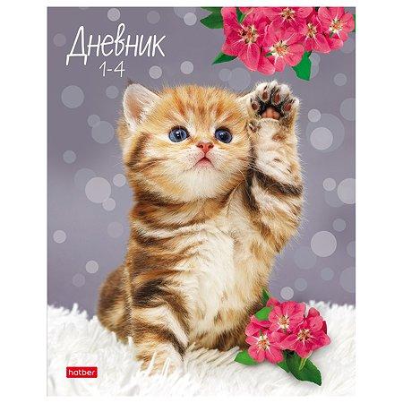 Дневник для младших классов Hatber Котенок с цветком А5 48л 63695