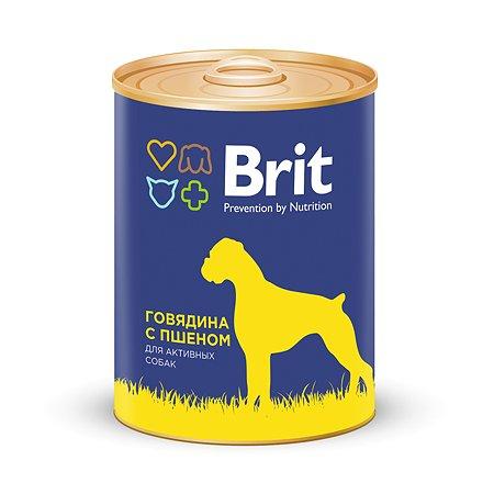 Корм для собак Brit с говядиной и пшеном консервированный 340г