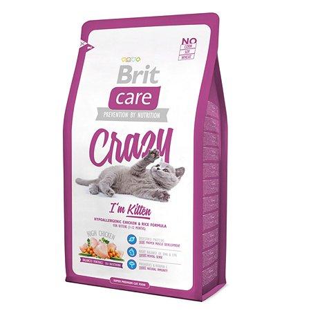Корм влажный для котят/кошек Brit Care 2кг беременных и кормящих сухой