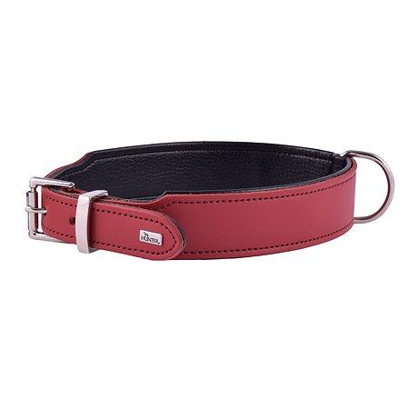 Ошейник для собак Hunter Basic 65 Красный-Черный