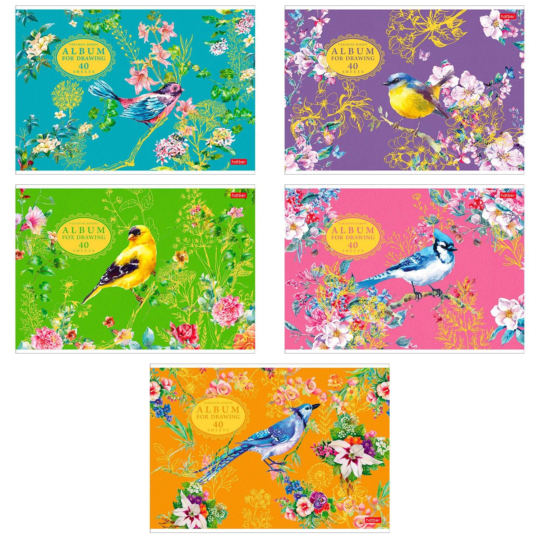 Альбом для рисования Hatber Райские пташки А4 40л в ассортименте 050118