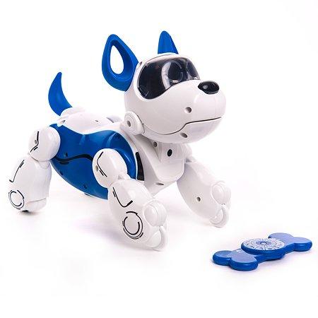 Игрушка Silverlit PupBo Собака Синяя 88520B