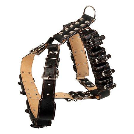 Шлея для собак CoLLar №0 спецназначения с утяжелителем Черный 50461