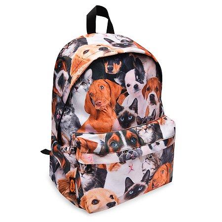 Рюкзак Erhaft Кошки и собаки FTP02