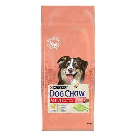 Корм для собак Dog Chow для активных с курицей 14кг
