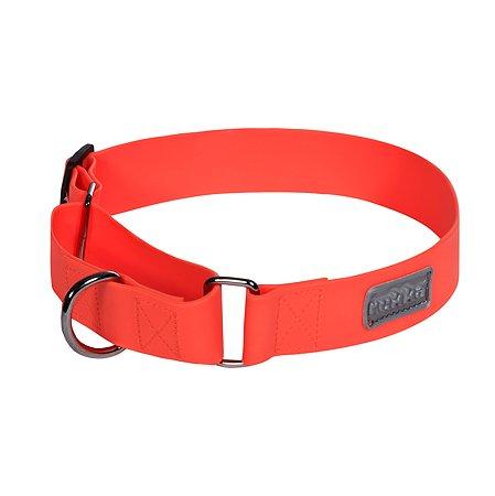 Ошейник для собак RUKKA PETS M Оранжевый 460108256J450M