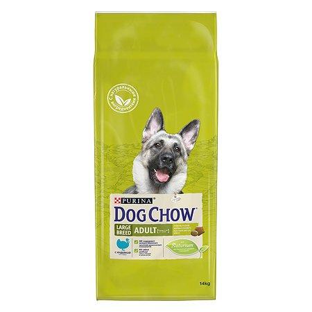 Корм для собак Dog Chow крупных пород с индейкой 14кг
