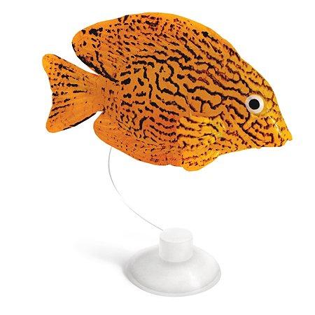 Рыбка для рыб Laguna Гурами декоративная 74054013