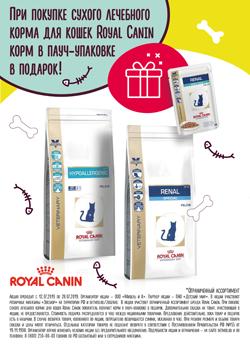 При покупке сухого лечебного корма Royal Canin для кошек — влажный корм в пауч-упаковке в подарок